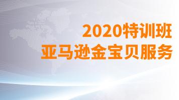 亚马逊金宝贝服务特训班-2020年百聚汇卖家服务