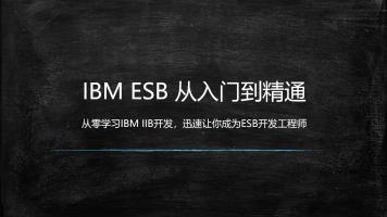 IBM ESB 从入门到精通