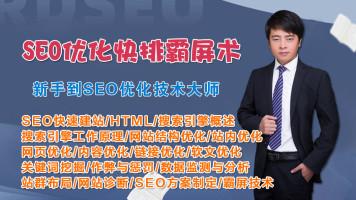 新手到SEO优化快排霸屏技术实战大师【VIP课堂】