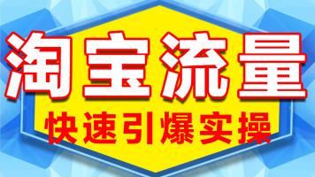 淘宝天猫运营新手开网店培训教程之淘宝直通车带动搜索首页流量