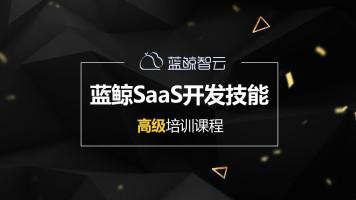 蓝鲸SaaS开发技能高级培训课程