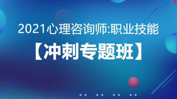 2021心理咨询:职业技能【冲刺专题班】