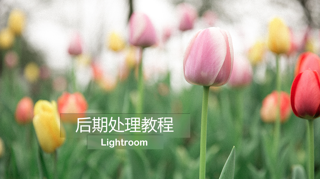 Lightroom后期处理教程