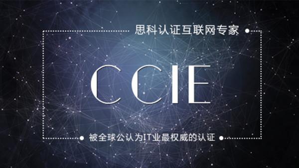 2020新版实战CCIE EI直通车课程【零基础开课】