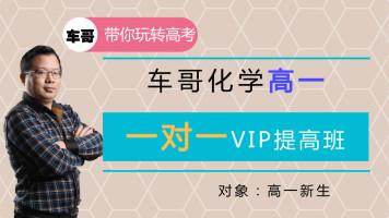高一:一对一VIP提高班