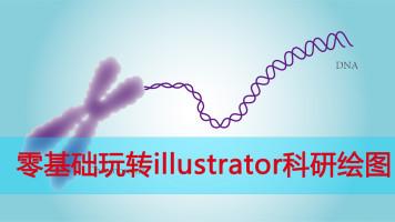 零基础玩转illustrator科研绘图