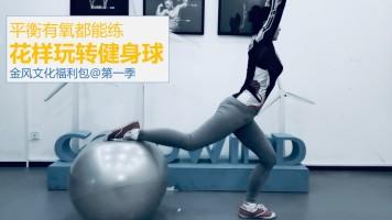健身球第一季【金风文化福利包免费课程】