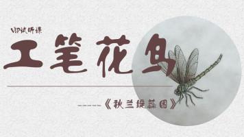 【视频】写意花鸟/工笔人物/书法国画/【零基础】合尚教育