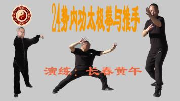 禅道24势内功太极拳与推手