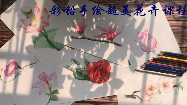 彩铅手绘超美花卉/水彩/绘画/插画/零基础学画画/素描/色彩