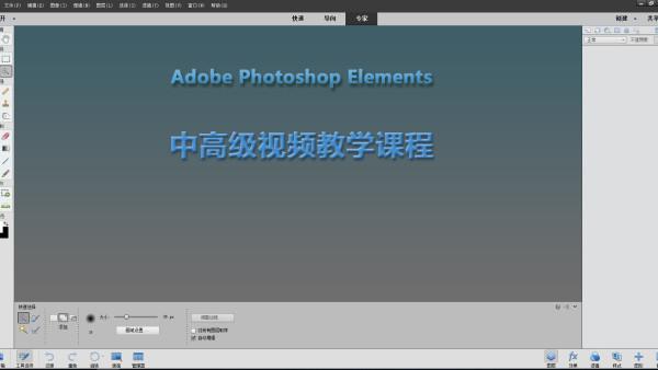 Photoshop Elements 中高级视频教学课程