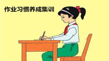 作业习惯养成集训一对一