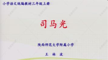 特级教师王林波/三年级上册第八单元第24课《司马光》