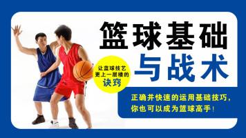 篮球基础与战术 实战技巧 全套系统教学课程