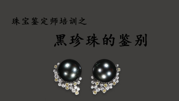 如何鉴别黑珍珠,黑珍珠的挑选方法-元实宝石鉴定培训班