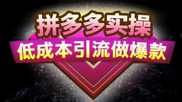 【圣狐电商】拼多多纯实操教程 日破100单系列课程