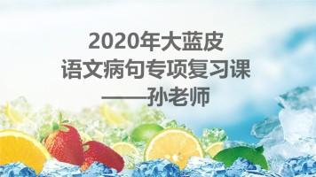 大蓝皮语文病句专项复习课程(孙老师授课)