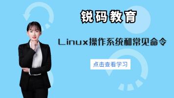 Linux操作系统和常见命令-中