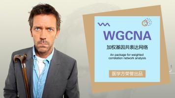 医学方 豪斯医生数据挖掘之WGCNA详解
