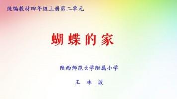 特级教师王林波/四年级上册第8课《蝴蝶的家》