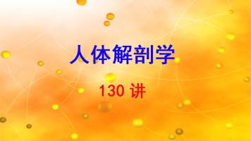 第四军医大学 人体解剖学 李云庆 130讲