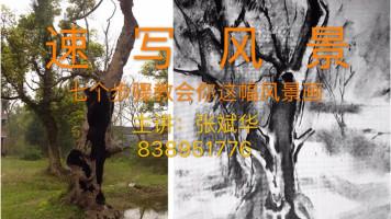 速写风景-树