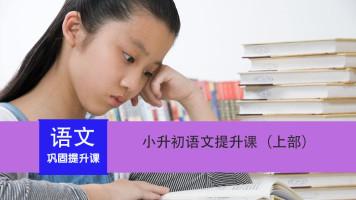 小升初语文阅读与写作(上)