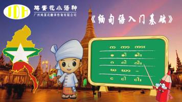 缅甸语入门基础