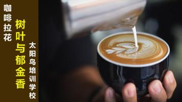 树叶和郁金香咖啡拉花教学