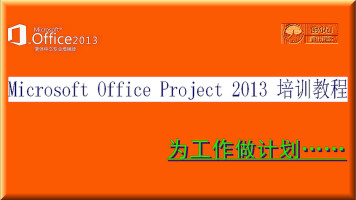 Microsoft Office Project 2013  技巧培训教程