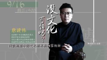 唐建伟老师9.16录播(没文化可怕吗?浅谈乡建中的文化传承)