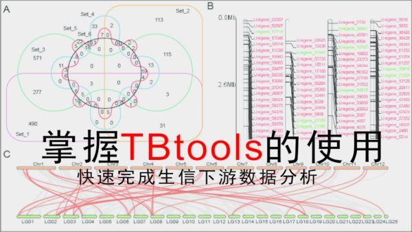 生信小工具TBtools使用系列讲演