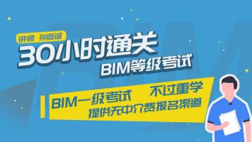 30小时通关BIM等级考试