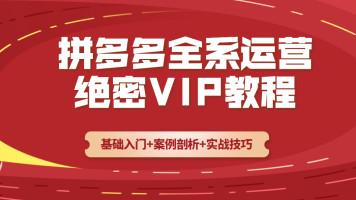 VIP从零起步打造爆款全系【拼多多】运营实操课程