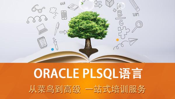 ORACLE SQL语言(ORACLE11G/ORACLE12C/SQL/PLSQL/实战)