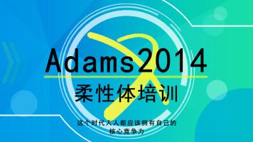 Adams柔性体培训