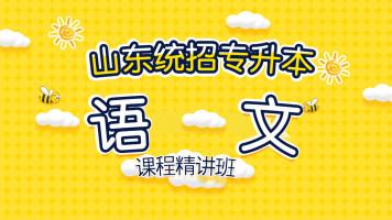 山东统招专升本-语文精讲课程-2020(全套)