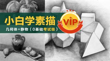 【VIP】《小白学素描》(强化)几何静物 美术基础/绘画/结构色调