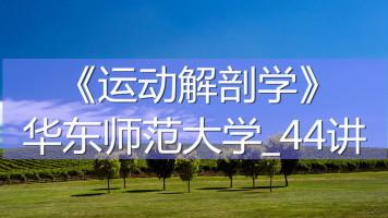 K7670_《运动解剖学》_华东师范大学_44讲