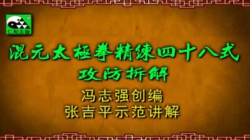 张吉平混元太极拳四十八式攻防拆解-混元48-精练48-推手实战