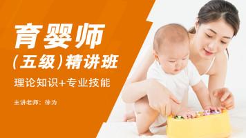 育婴师(五级)精讲班 理论知识+专业技能