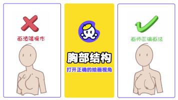 女性胸部结构造型的绘画【插画/原画教程】