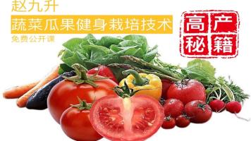 蔬菜瓜果葡萄草莓健身栽培种植技术