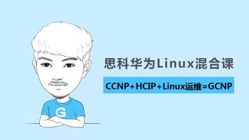 思科CCNP+华为HCIP+Linux运维-全程直播/高清录屏