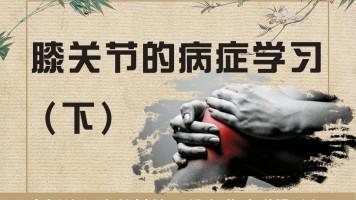 骨性关节炎(下)/中医针灸推拿