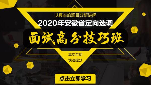 2020年安徽省定向选调面试高分技巧班