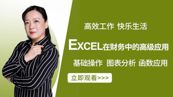 EXCEL在财务中的高级应用