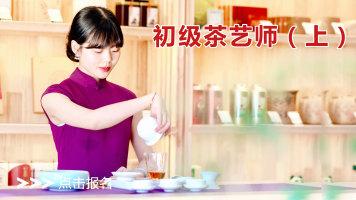 茶艺(师)实操培训课程—初级茶艺师教学视频(上)四集