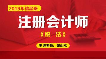 2020年注册会计师精品班【税法】