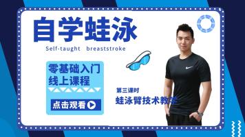 自学蛙泳  国家级教练2021版4k高清
